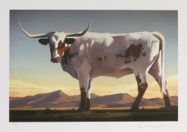 Longhorns 10x15, Archival Pigment Print, $450.00 Print & Signature Mell Frame $750.00