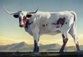 Ed Mell Longhorns 10 x 15, Archival Pigment Print $450.00